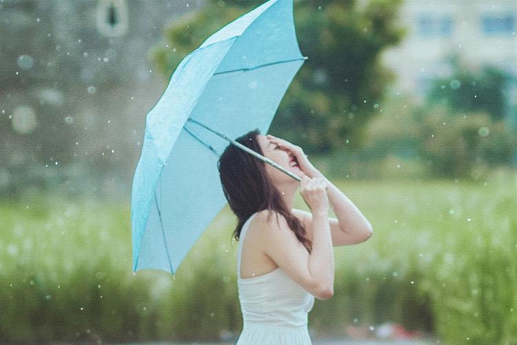 傘の夢の夢占い