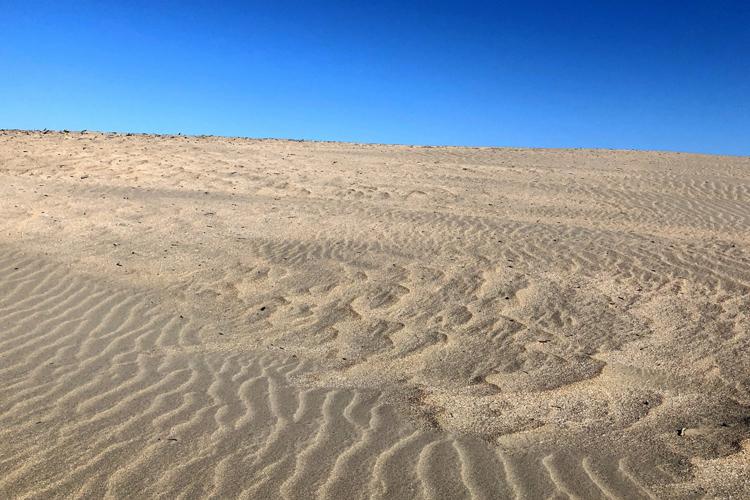 砂の夢の夢占い